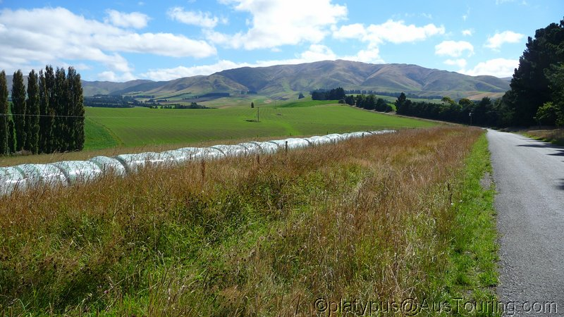 NZ_SI_2012_0451.JPG