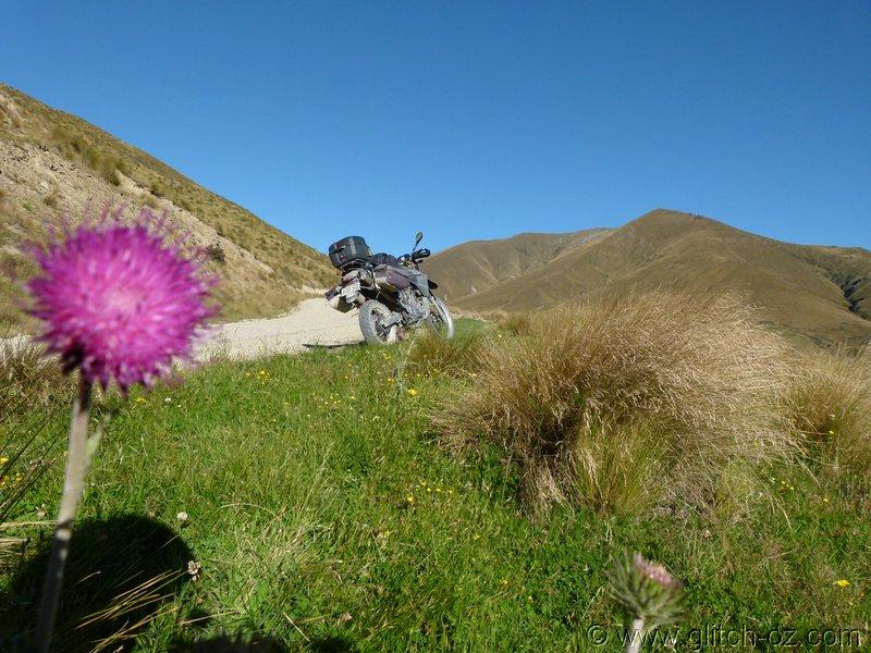 NZ_SI_2012_0495.JPG