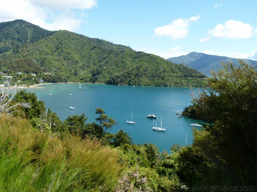 NZ_Feb13_0365.JPG