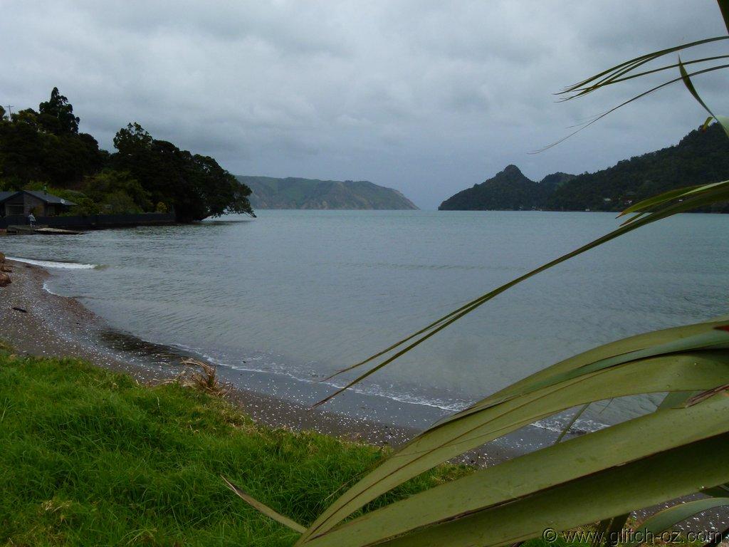 Tiddlers_NZ14_015.JPG
