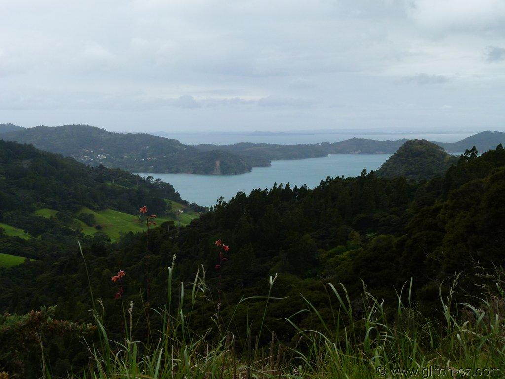 Tiddlers_NZ14_019.JPG