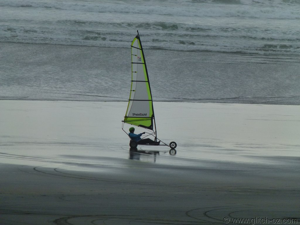 Tiddlers_NZ14_027.JPG