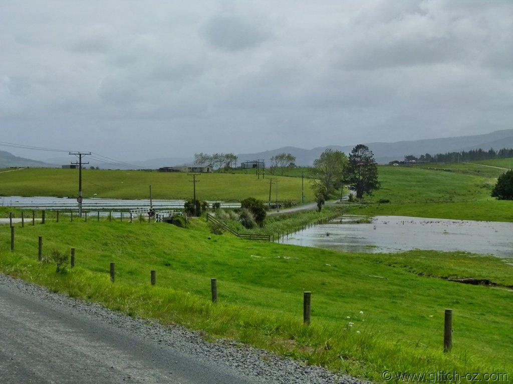 Tiddlers_NZ14_096.JPG