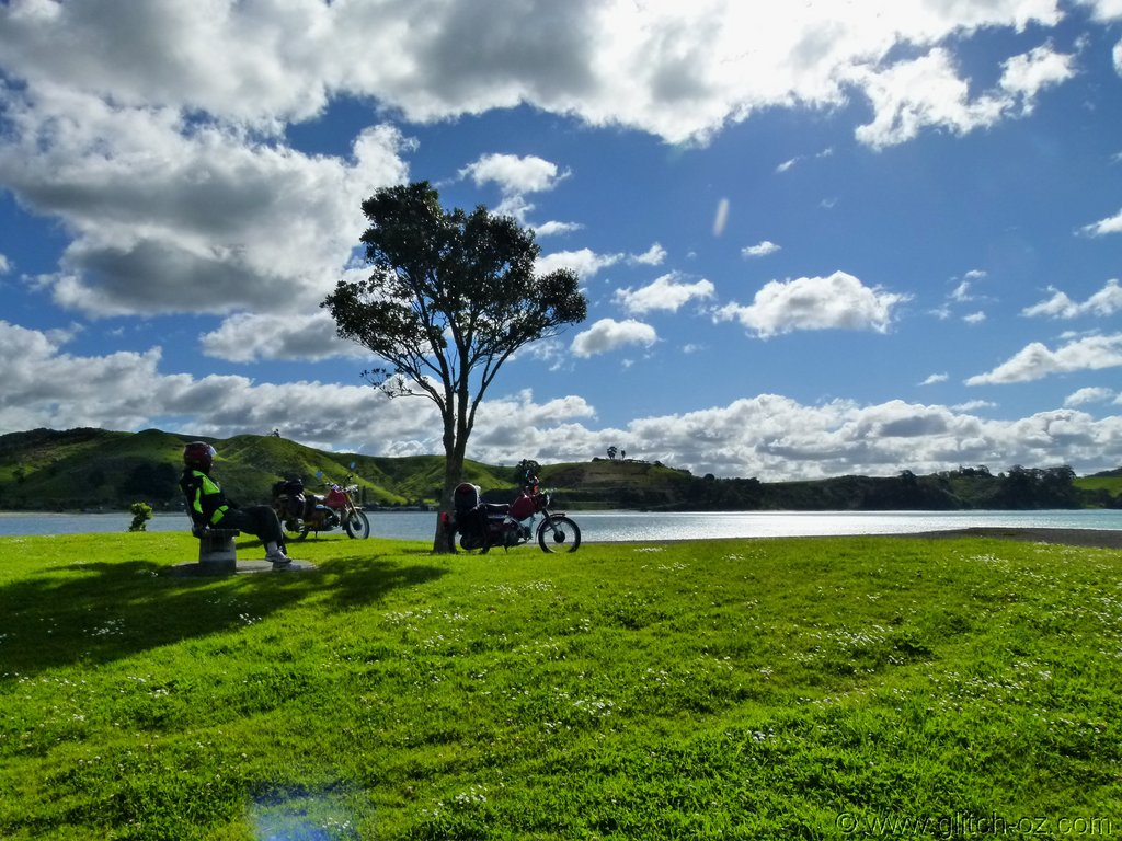 Tiddlers_NZ14_382.JPG